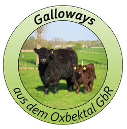 Galloways aus dem Oxbektal GbR